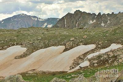 Mt Harvard Photograph - Horn Basin by Tonya Hance