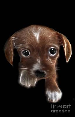 Pup Digital Art - Innocent Loving Eyes by Peter Piatt