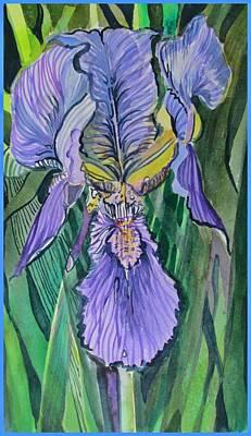 Iris Drawing - Iris by Mindy Newman