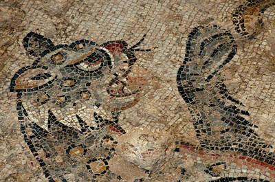 Mosaic Photograph - Israel, Lower Galilee, Floor Mosaic by Ellen Clark