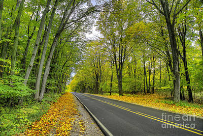 Backroad Photograph - Joyfield Road In Arcadia by Twenty Two North Photography
