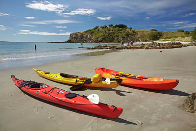 Kayaks On Beach Near Doctors Point Print by David Wall