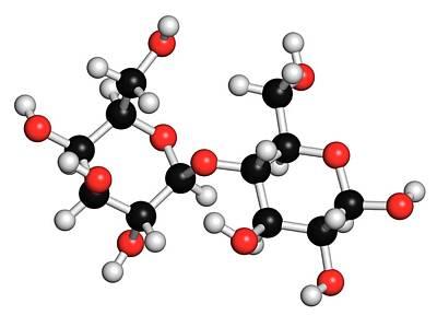 Lactose Milk Sugar Molecule Print by Molekuul
