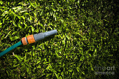 Lawn Maintenance And Garden Care Print by Jorgo Photography - Wall Art Gallery