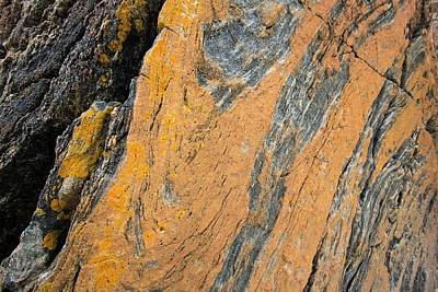 Lewisian Gneiss Print by Ashley Cooper