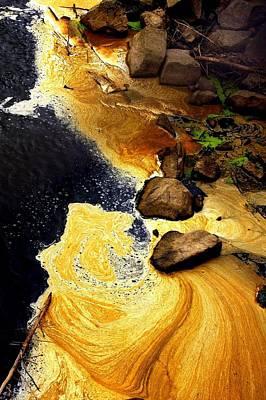 Liquid Gold Print by Marcia Lee Jones