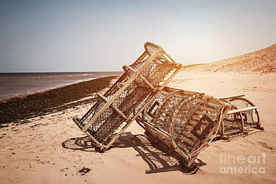 Lobster Traps On Beach Print by Elena Elisseeva