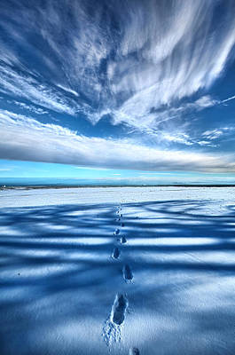 Bluesky Photograph - Looking Back by Phil Koch
