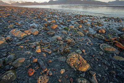 Lands End Photograph - Low Tide At Sunrise by Tom Norring