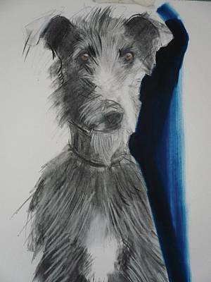 Lurcher, 2012 Charcoal And Oil On Paper Print by Sally Muir