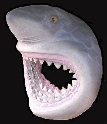 Palmfish Sculpture - Mack The Shark by Dan Townsend