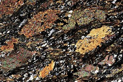 Mica Schist, Thin Section, Polarized Lm Print by Pasieka