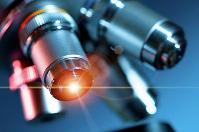 Microscope Print by Wladimir Bulgar