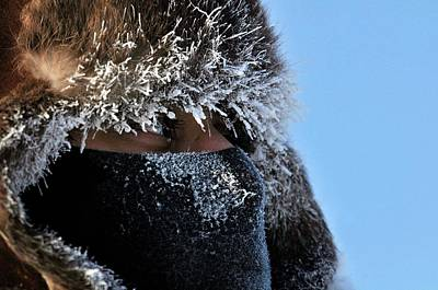2009 Photograph - Military Arctic Training by Us Navy/tiffini M. Jones