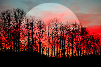 Funky Photograph - Moon Dance by Karen Wiles
