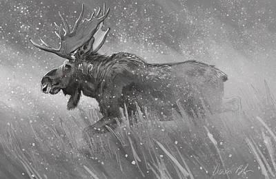 Digital Art - Moose Sketch by Aaron Blaise