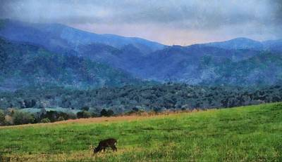 Morning Deer In Cades Cove Print by Dan Sproul