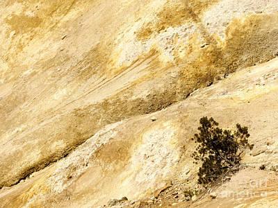 Mount Lassen Print by Mary Lane