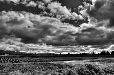 Fields Photograph - Mount Vernon Farmland - Washington State by David Patterson