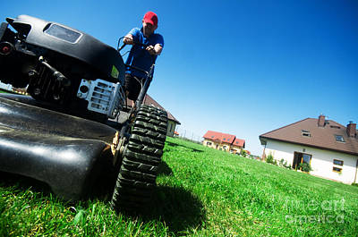 Smiling Photograph - Mowing The Lawn by Michal Bednarek
