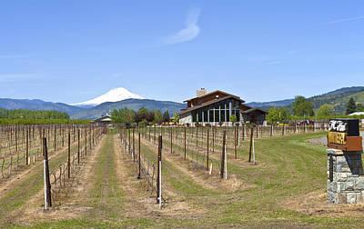 Mt Hood Winery Oregon. Print by Gino Rigucci