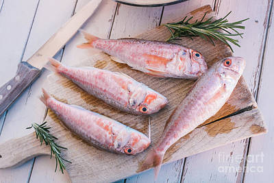 Wood Fish Photograph - Mullet Fish And Rosemary  by Viktor Pravdica