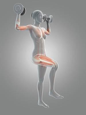 Muscles Of Weight Lifter Print by Sebastian Kaulitzki