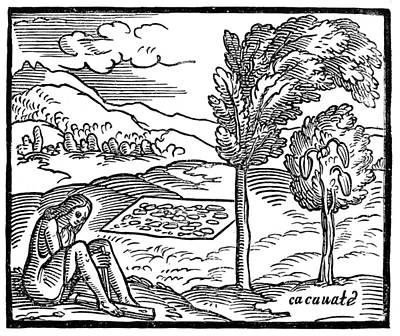Mesoamerican Painting - New World Chocolate, 1563 by Granger