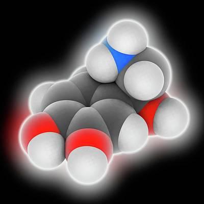 Norepinephrine Molecule Print by Laguna Design