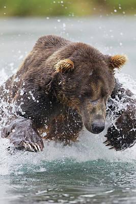 Salmon Photograph - North America, Usa, Alaska, Geographic by Joe and Mary Ann Mcdonald