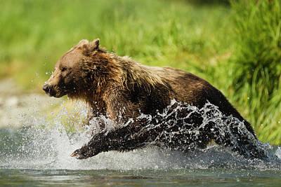 Water Play Photograph - North America, Usa, Sw Alaska by Joe and Mary Ann Mcdonald