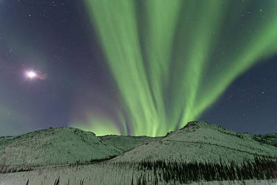 Northern Lights Shimmer Over The White Print by Hugh Rose