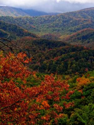 October Colors In Tennessee Print by Dan Sproul