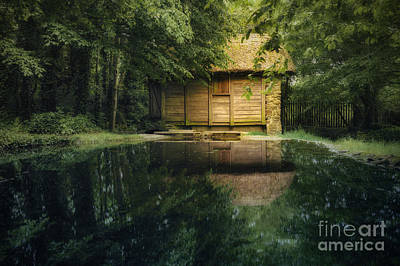 On A Lake Print by Svetlana Sewell