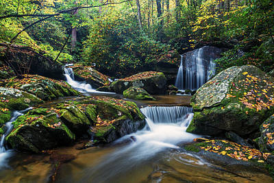 Background Photograph - On The Way To Catawba Falls by Andres Leon