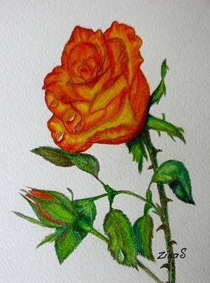 Orange Rose Original by Zina Stromberg