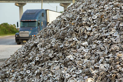 Oyster Shells After Processing Print by Jim West