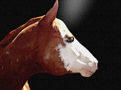 Paint Horse Print by Dennis Buckman