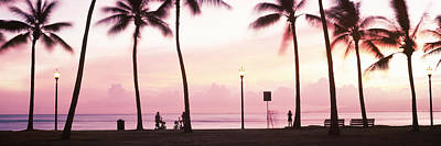 Getting Away From It All Photograph - Palm Trees On The Beach, Waikiki by Panoramic Images