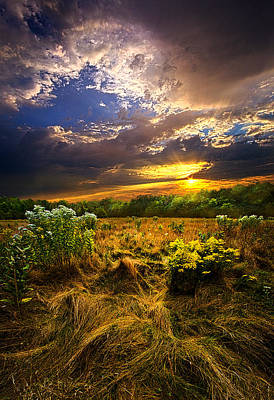 Peace Of Mind Print by Phil Koch