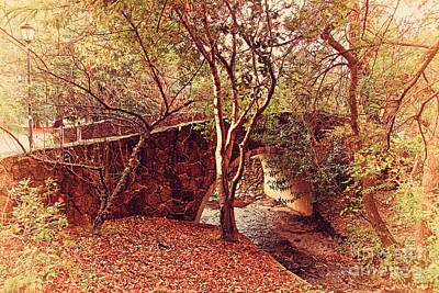 Pedestrian Bridge And Strawberry Creek  . 7d10152 Print by Wingsdomain Art and Photography