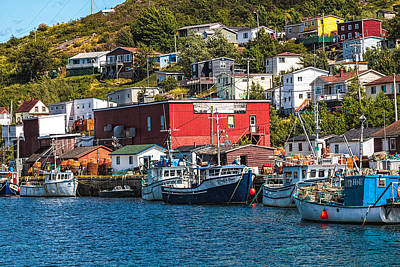 Maddox Photograph - Petty Harbour by Perla Copernik