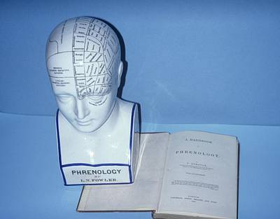 Phrenology Head Print by Science Photo Library