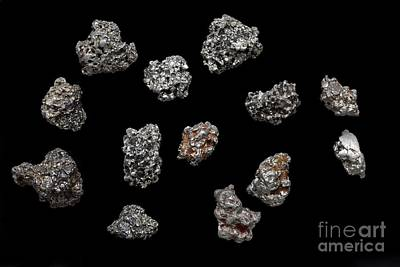 Platinum Nuggets Print by Dirk Wiersma