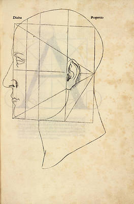 Proportions Photograph - Proportions Of The Human Face by Library Of Congress