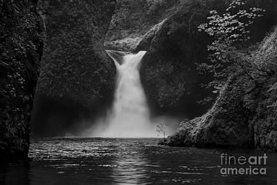 Lichen Photograph - Punchbowl Falls by Keith Kapple