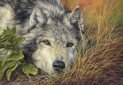Gray Wolf Painting - Pure Soul by Lucie Bilodeau