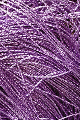 Sisal Photograph - Purple String by Tom Gowanlock