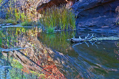 West Fork Digital Art - Reflection In The Water by Brian Lambert