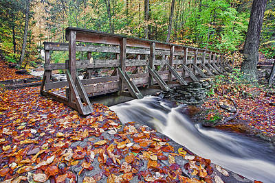 Leafs Photograph - Ricketts Glen Bridge by Marcia Colelli